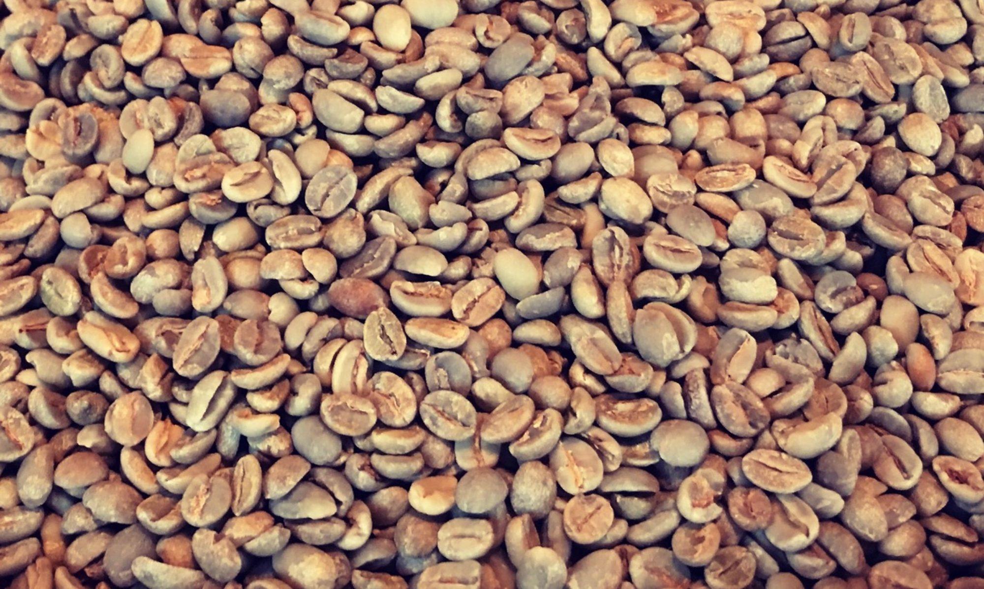 珈琲豆焙煎 kaffa